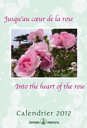 Calendar 2012: « Into the hearth of the rose »